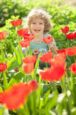 Child in flowery garden — Stok fotoğraf