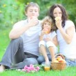 Happy family having picnic outdoors — Stock Video #21381625