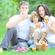 Happy family having picnic in spring park — Stock Video
