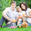 Happy family having picnic — Stock Photo #21556265