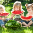 Children having picnic in summer — Stock Photo