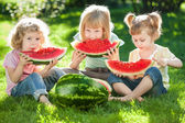 Children having picnic in summer — Stock Photo