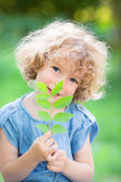 Young plant against green background — ストック写真