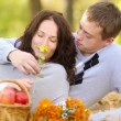 Happy couple relaxing in autumn park — Stock Video