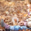 Happy child feeds a little squirrel in autumn park — Stock Video