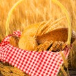 homemade bread and wheat on the wooden table — Stock Photo