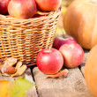 Fruits and vegetables in autumn — Stock Photo #31767975