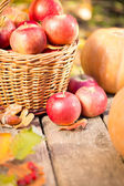 Fruits and vegetables in autumn — Stock Photo