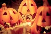 Scary halloween pumpkins jack-o-lantern candle lit — ストック写真