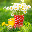 Spring flowers — Stock Photo #39204901