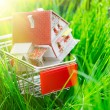 House in shopping cart — Stock Photo