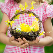 Easter eggs on green grass — Foto Stock