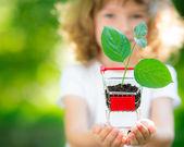 Planta jovem em mãos — Fotografia Stock