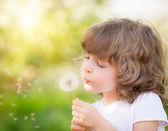 Happy child blowing dandelion — Stock Photo