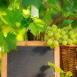Bunch of white grapes in basket and blackboard — Stock Photo