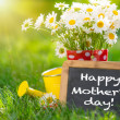 Stock Photo: Mother's day greeting