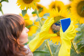 Woman cleaning sunflower — Stock Photo