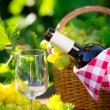 White wine bottle — Stock Photo #42217677