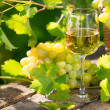 White wine in glass — Stock Photo #42609317