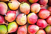 Red ripe pears — Stock Photo