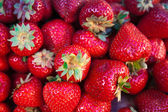 Pile of bright red strawberries — Stock Photo