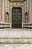 Particular of the door of the cathedral of Florence — Stock Photo