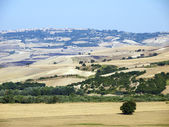Panoramic views of the country in Apulia Italy — Stock Photo