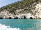 ガルガーノ プーリア イタリアの海岸の landscapre — ストック写真