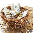 Stock Photo: Nest egg overflowing with money