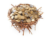 Nest full of coins isolated on white — Stock Photo