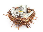 Dollar bills and coins in birds nest isolated on white backgroun — Stock Photo