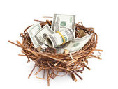 Dollar bills and coins in a birds nest — Stock Photo