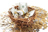 Nest egg overflowing with money — Stock Photo