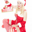 Sexy Christmas girl with Christmas decoration — Stock Photo