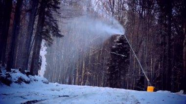 Um canhão de neve no inverno paisagem forrest — Vídeo Stock