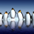 Fun penguins - Stock Photo
