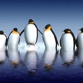 Fun penguins — Stock Photo