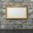 Ornate vintage frame — Stock Photo #13308465