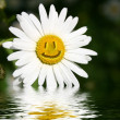 Smiling flower — Stock Photo
