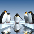 Fun penguins — Stock Photo #13325182