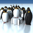 Fun penguins — Stock Photo #27865475