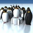 Stockfoto: Fun penguins