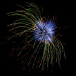 Fireworks — Stock Photo #12367599