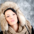 Winter portrait — Stock Photo #14180363