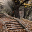 Autumn stairway — Stock Photo #15725307