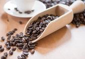 Palonych ziaren kawy — Zdjęcie stockowe