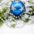 Christmas bauble on snowy branch — Stock Photo #14327767