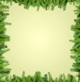 Fir tree branches frame — 图库照片