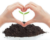 Love for nature concept — Stock Photo