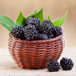 Fresh blackberry in small fruit basket — Stock Photo